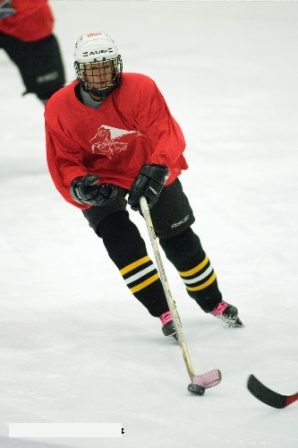 Hockey player in red jersey skaing on ice rink